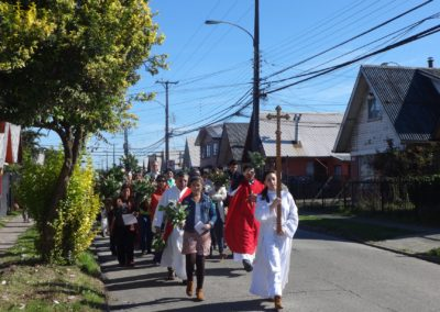 Fr. Diego Gallardo, C.PP.S., during Palm Sunday procession in Chile.